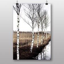 Leinwandbild Birch Tree Forest No. 1, Fotodruck