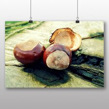 Chestnut Tree Conkers Photographic Print Wrapped on Canvas