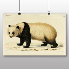 Poster Panda Japanese Oriental, Kunstdruck