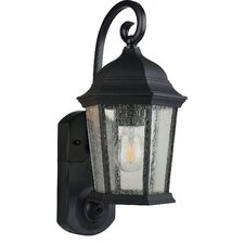 Maximus 1 Light Outdoor Wall Lantern