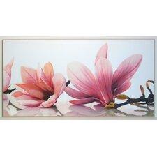 Kunstdruck Magnolie - 51 x 101 cm