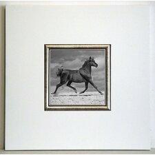 Gerahmter Kunstdruck Schwarzes Pferd - 40 x 40 cm