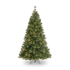 6.5' Atlanta Mixed Cashmere Pine Medium Artificial Christmas Tree with Clear Lights