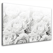 Leinwandbild Bed of Roses, Fotodruck