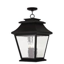 Campfield 4 Light Outdoor Hanging Lantern