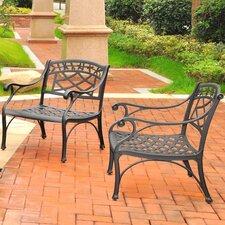 Lomax 2 Piece Cast Lounge Chair (Set of 2)