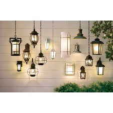 Mayer 1 Light Outdoor Hanging Lantern