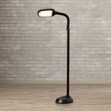 "60"" Task Floor Lamp"