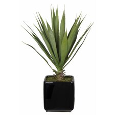 Artificial Desk Top Plant in Vase