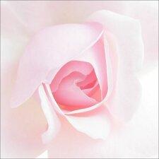 Glasbild Rose Fotodruck