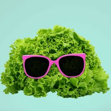 Mr. Salad Cut Out Wall Decal