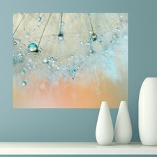 Droplets of Aqua by Ingrid Beddoes Wall Decal