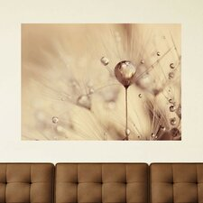 A Touch of Gold by Ingrid Beddoes Wall Decal
