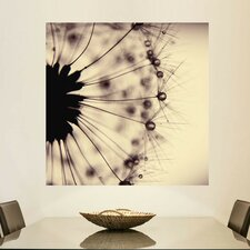 Droplets of Mocha by Ingrid Beddoes Wall Decal