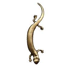 """Lizard 1 3/5"""" Center Arch Pull"""