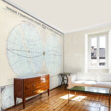 Double Hemisphere Map Wall Mural