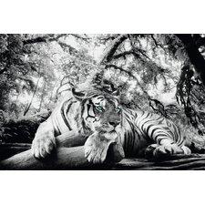 Deco Panel Tiger guckt dich an - 60 x 90 cm