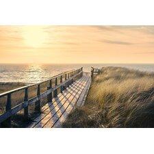 Deco Panel 'Weg zum Strand', Fotodruck