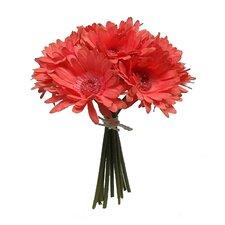 Tall Gerbera Daisy Bouquet