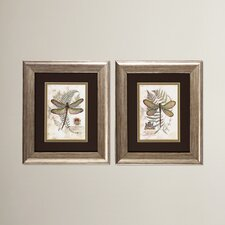 Dragonfly I and II Framed Painting Print (Set of 2)