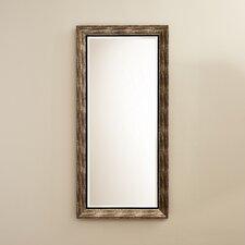 Silver Mirrors Wayfair