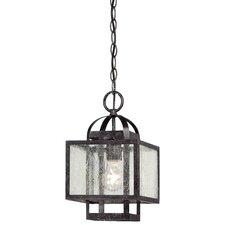 Pine Haven 1 Light Mini Pendant