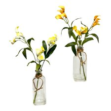 Faux Calla Lilies Floral Arrangement in Glass Jars (Set of 2)