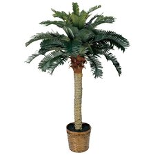 Brookings Palm Tree with Basket