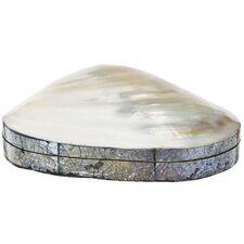 Natural Shell Keepsake Box