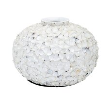Beautiful Shell Vase