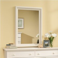 Pinellas Mirror