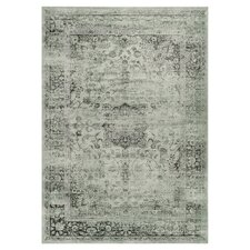 6 X 9 Area Rugs Wayfair