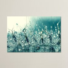 Under the Sea by Beata Czyzowska Young Photographic Print on Canvas