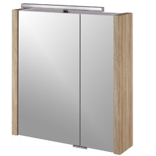 Asbach 68cm x 75cm Surface Mount Mirror Cabinet