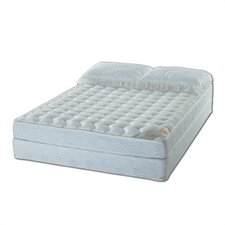 Expressions Water Mattress Set