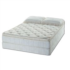 Essence Water Mattress Set