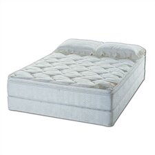 Naples Water Mattress Set