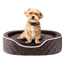 Renny Quilted Memory Foam Orthopedic Oval Cuddler Bloster Bed Dog