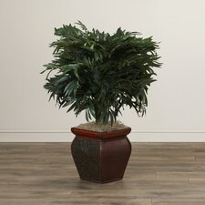 Tilburg Double Bamboo Palm Floor Plant in Decorative Vase
