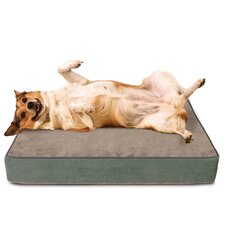 Dog Bed with Lux Cover