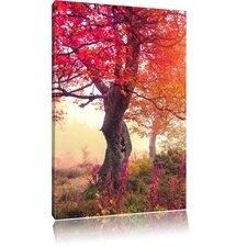 Leinwandbild Traumhafter Wald im Herbst