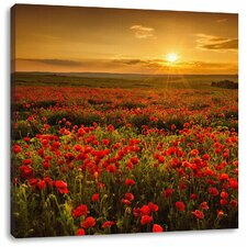 Leinwandbild Romantisches Mohnblumenfeld zur Goldenen Stunde