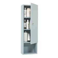 """Transitions 12"""" x 38.5"""" Wall Mounted Cabinet"""
