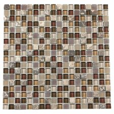 """Paragon 12"""" x 12"""" Glass Mosaic Tile in Sable Mixed"""