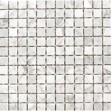 "Carrara 1"" x 1"" Stone Mosaic Tile in White"