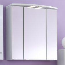 Small 60 cm x 64 cm Mirror Cabinet