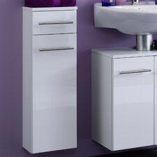 Small 25 x 79cm Cabinet