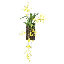 Dance Orchid, Foliage and Twig Wall Décor