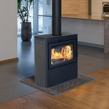 Vision See-Through Wood Burning Stove