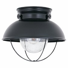 Everetts 1 Light Outdoor Flush Mount